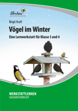 Vögel im Winter DLP
