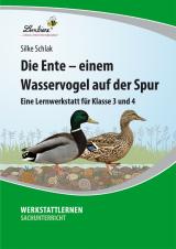 Die Ente – einem Wasservogel auf der Spur