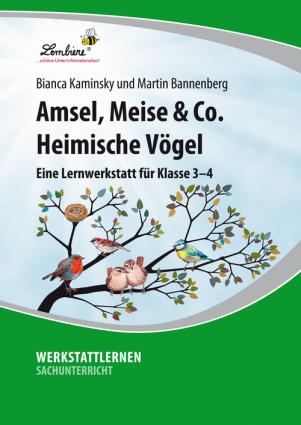 Amsel, Meise & Co: Heimische Vögel