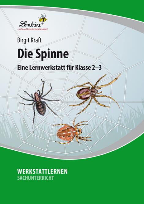 Die Spinne PR