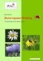 Materialpaket Frühling