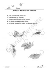 Die Schmetterlinge PR