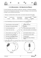 Eine (Lese-)Reise zu den Honigbienen DLSL