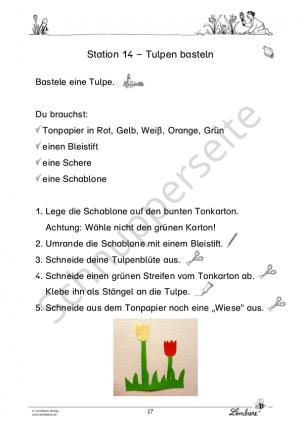 Frühblüher: Tulpe, Krokus & Co DLP